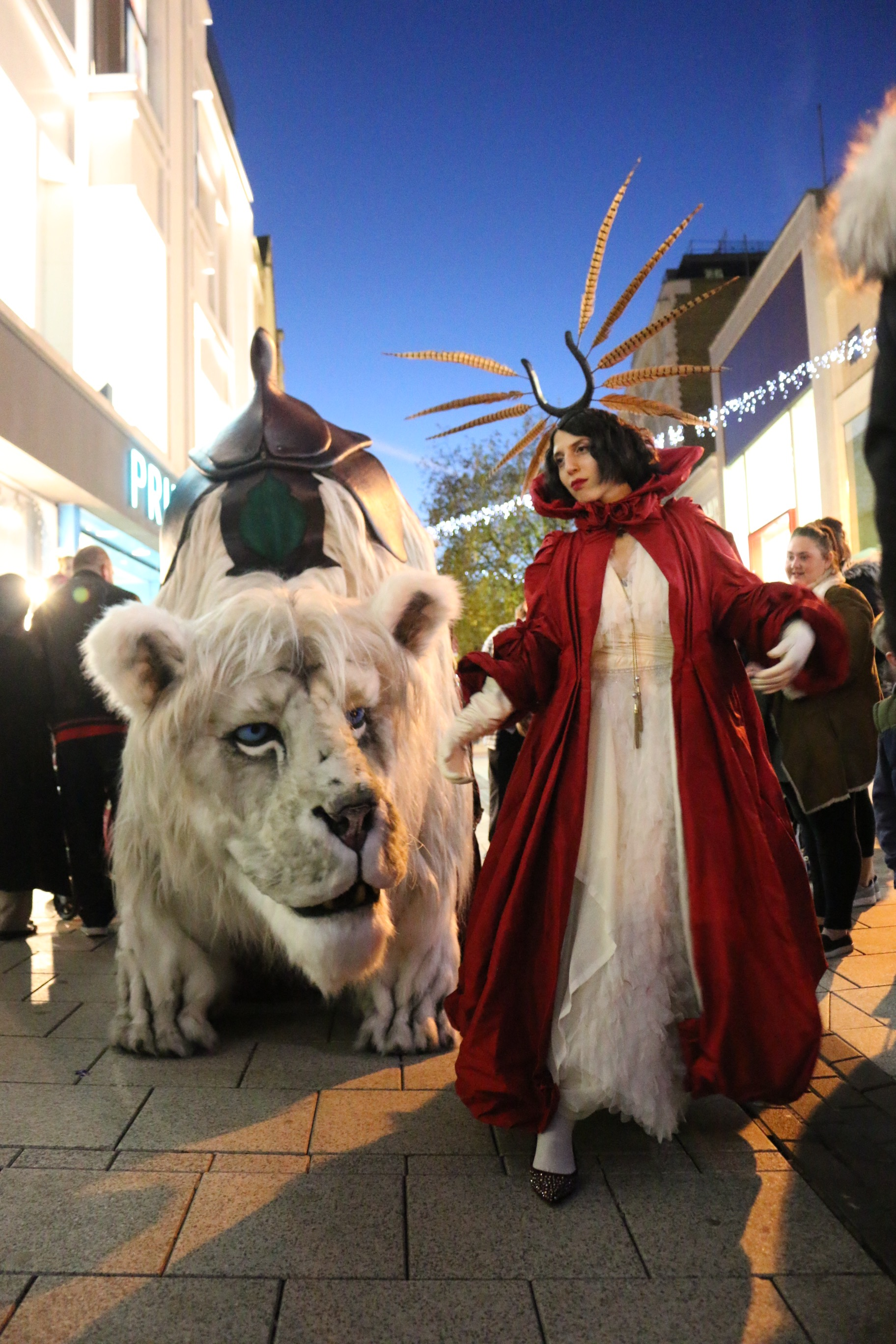 Meet the snow lion this Christmas in New Square Shopping Centre